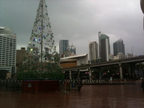 20111220-203102.jpg