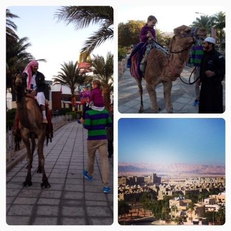 guide till jordanien