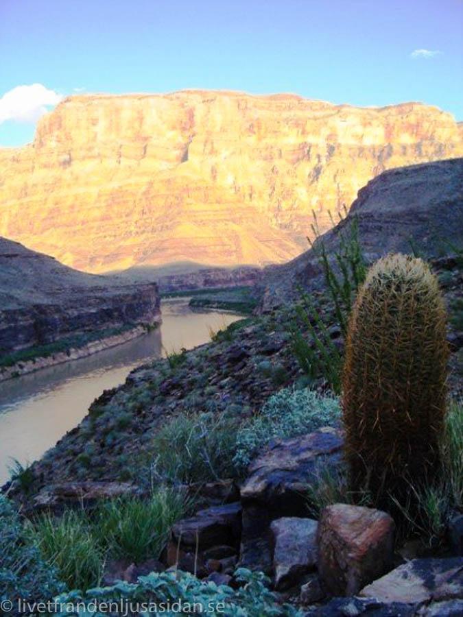 grand-canyon-3-av-5