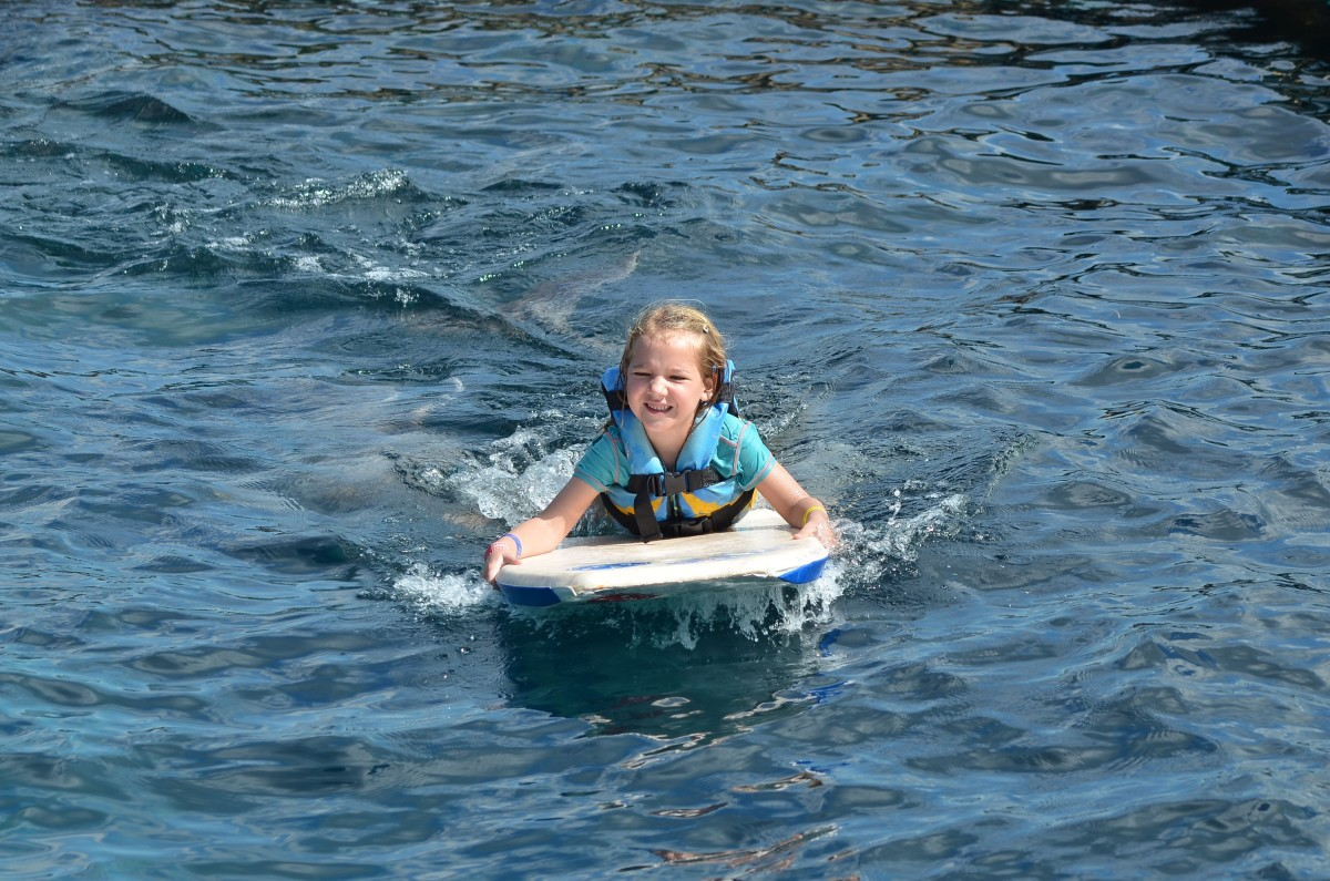 simma med delfiner