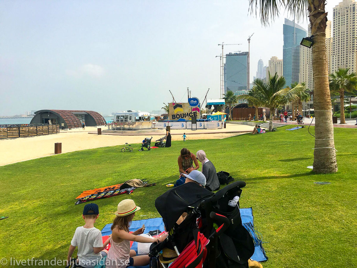 Dubai marina (1 av 1)-2