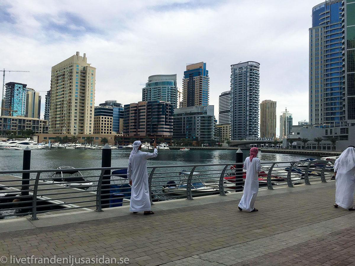Dubai marina (1 av 1)