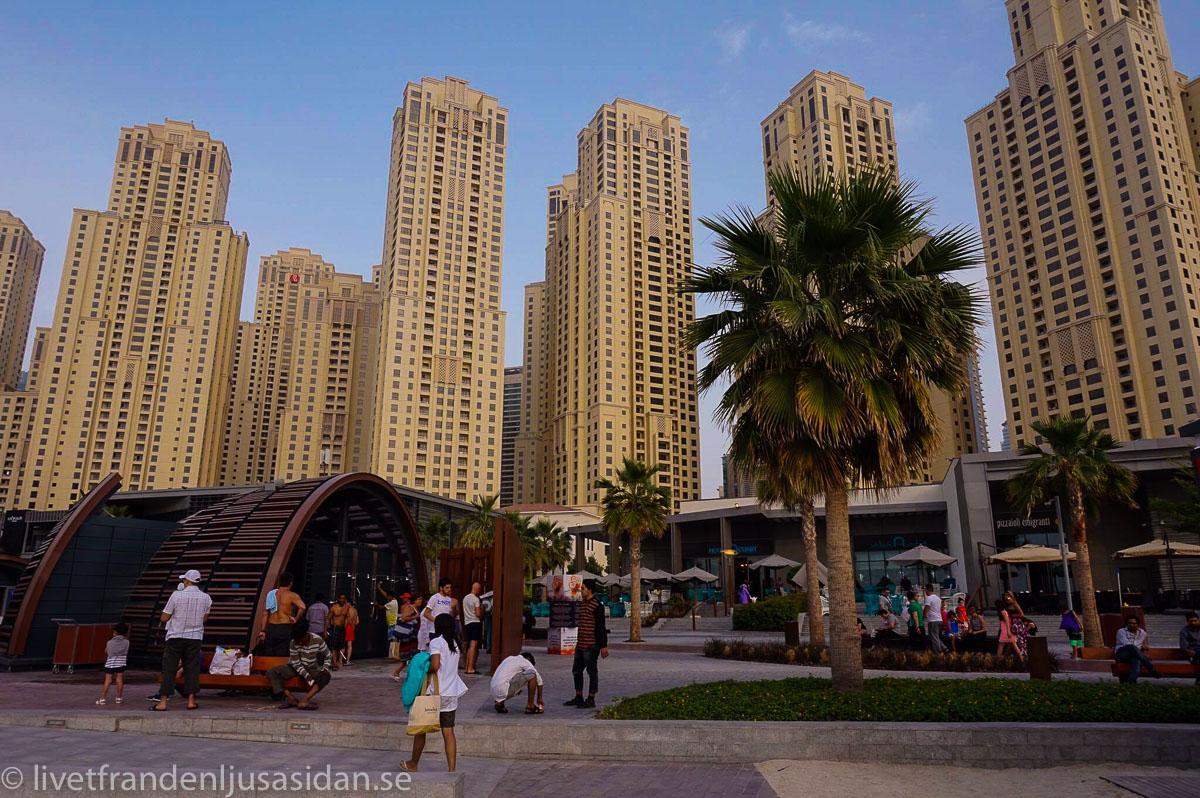 bo i Dubai marina (1 av 1)-3