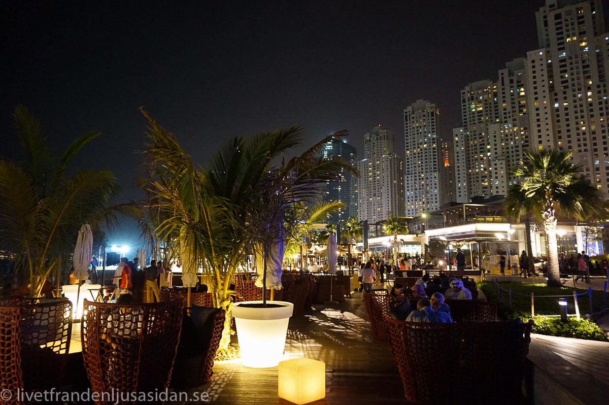 bo i Dubai marina (1 av 1)-6