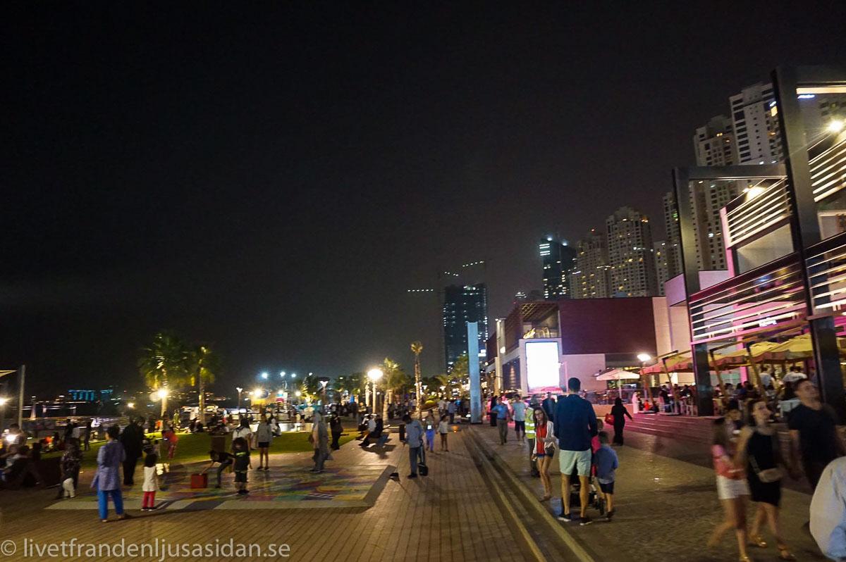 bo i Dubai marina (1 av 1)-7