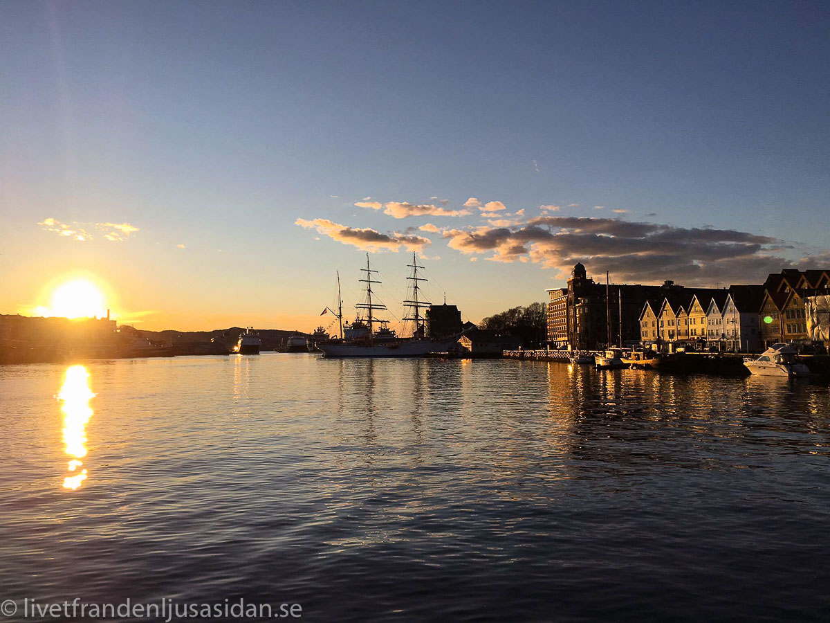 norges fjordar (1 av 1)