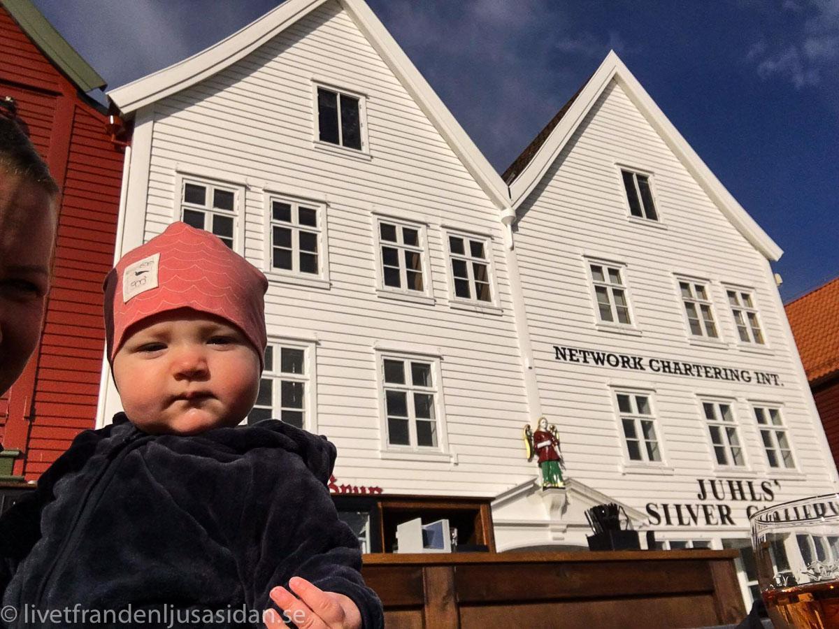 norges fjordar (1 av 1)-6