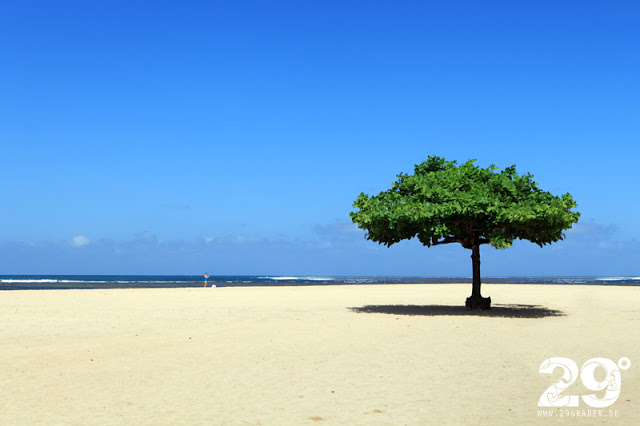 Sanur-Beach_Bali_IMG_5010_1
