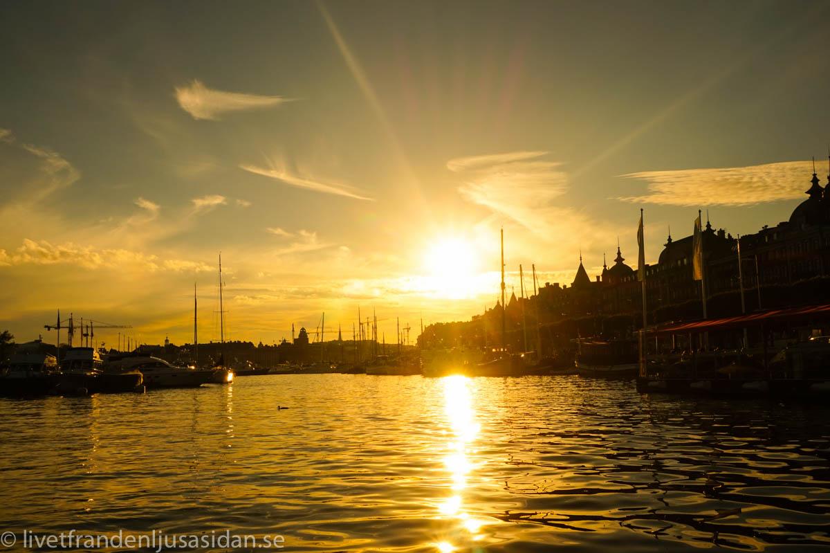 picknickbåt Stockholm (1 av 1)-8