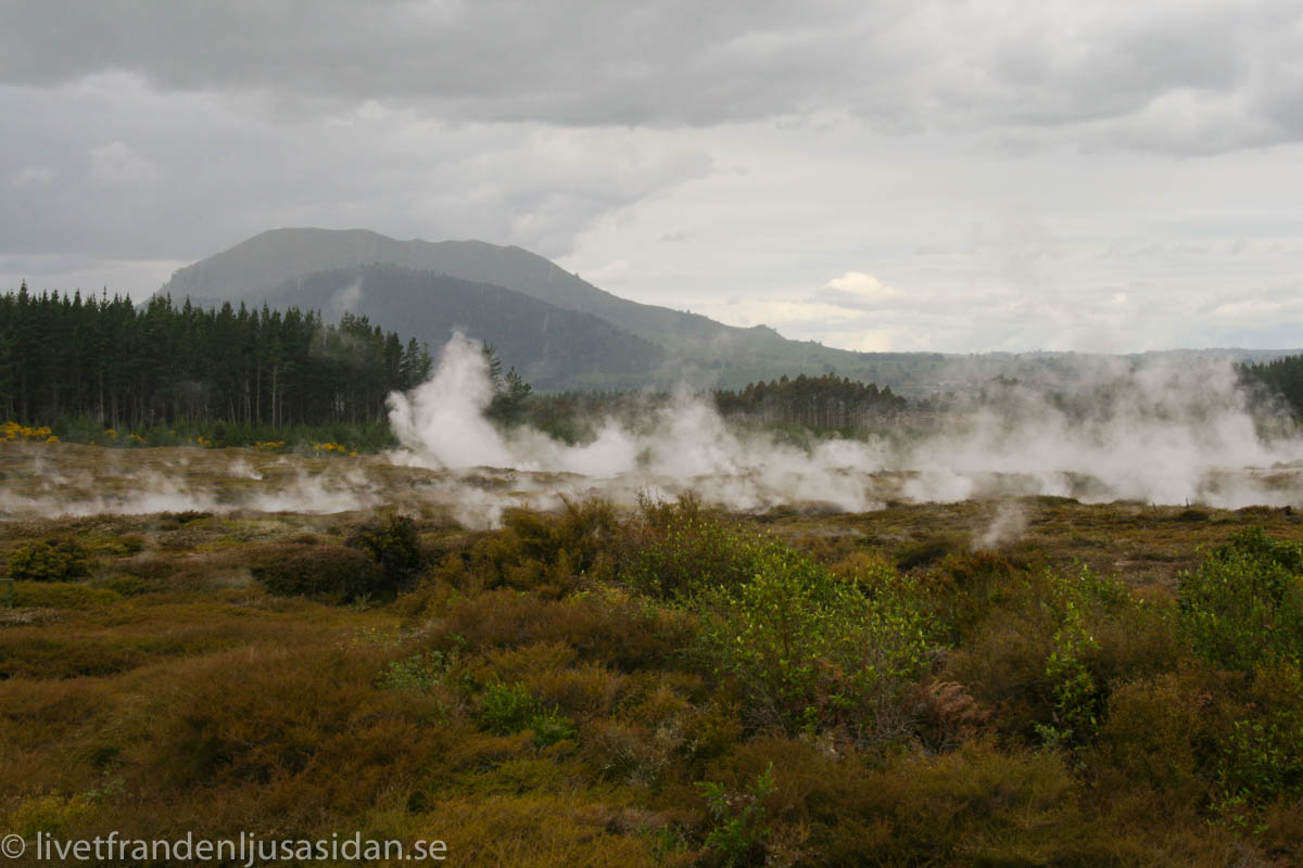 Craters of the moon Taupo
