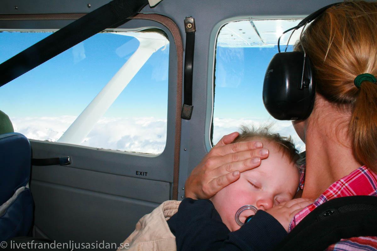 nya-zeeland-med-barn-37-av-87