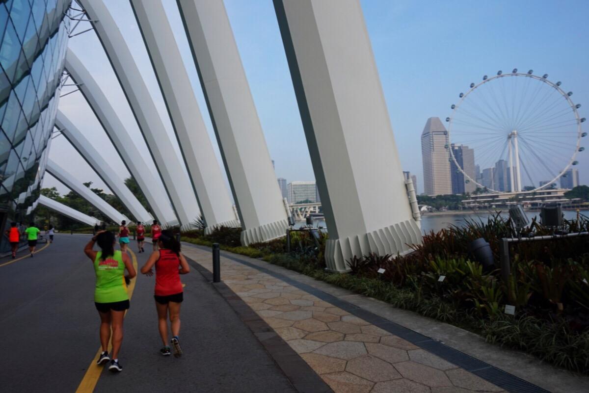 guide till singapore tips att göra i singapore