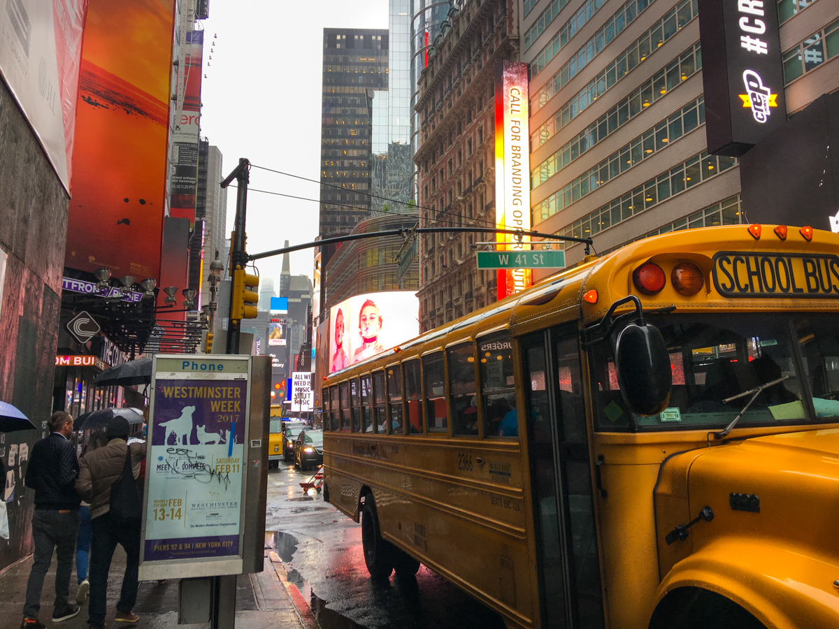vilket område ska man bo i new york (18 av 24)