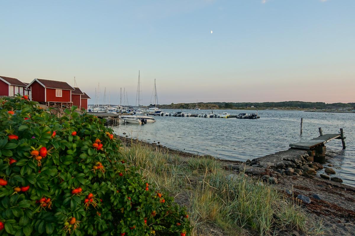 solnedgång-tanumstrand-grebbestad-bohuslän (27 av 33)