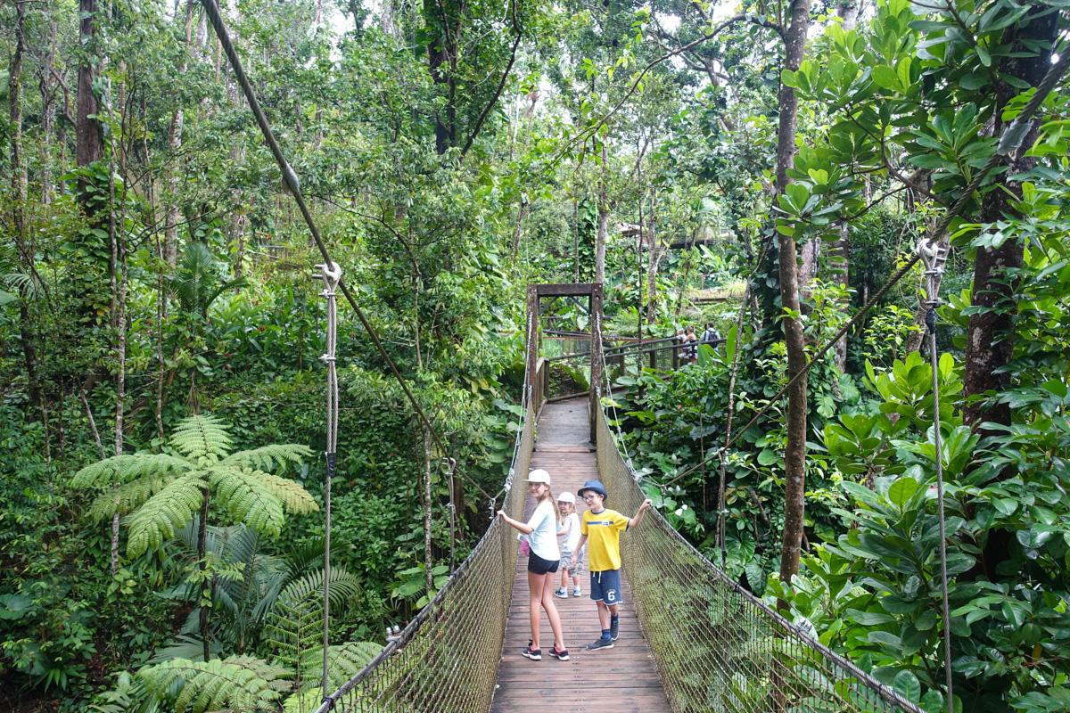 guadeloupe zoo basse-terre