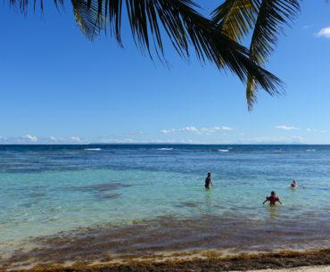 Dagarna på Guadeloupe – varierad semester