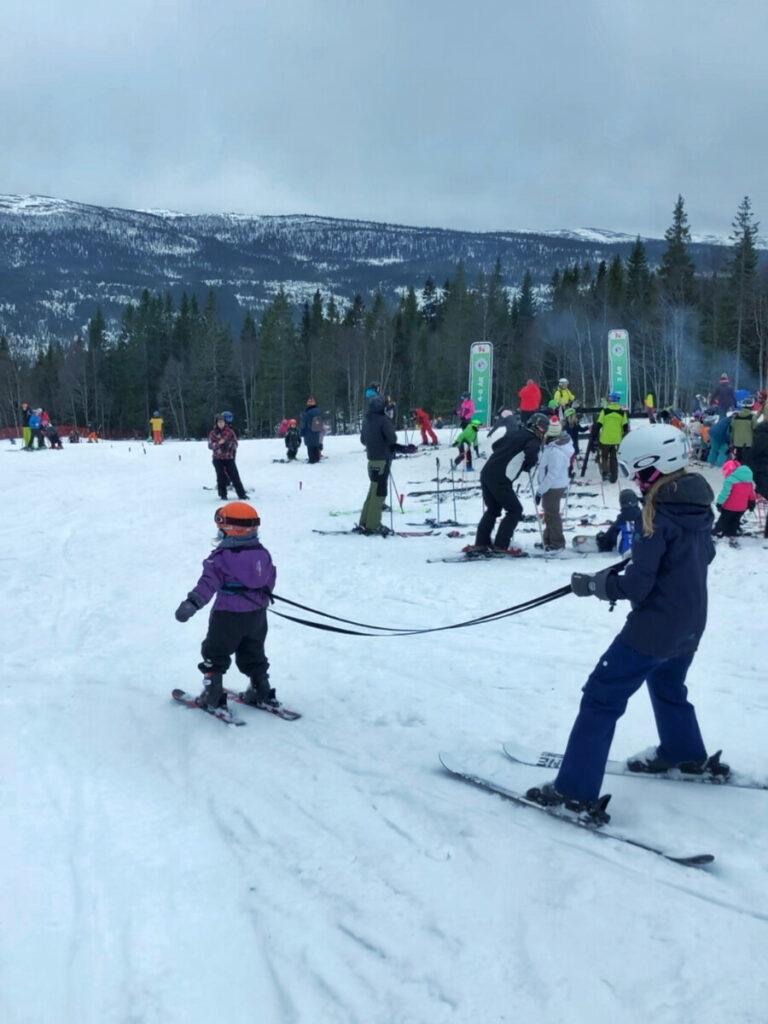 åre-sportlov-meja-skidor