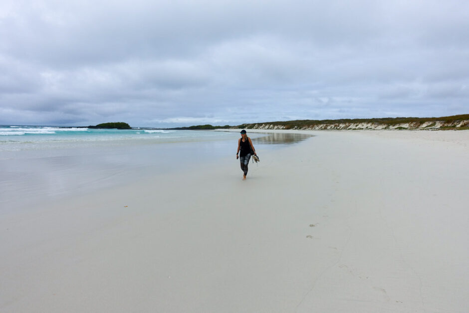 galapagosöarna santa cruz isabela-55
