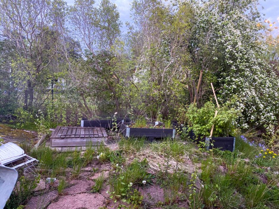 villa nacka trädgård